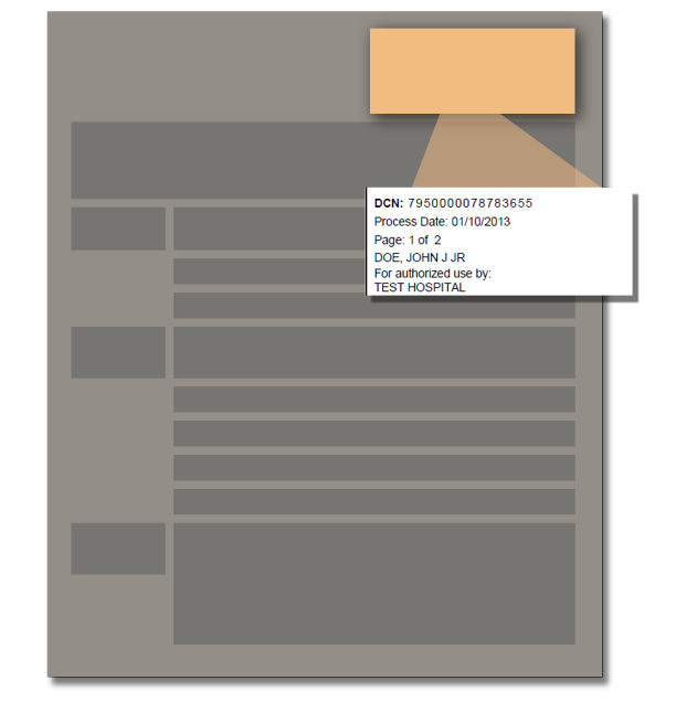 Screenshot Image of Report Heading