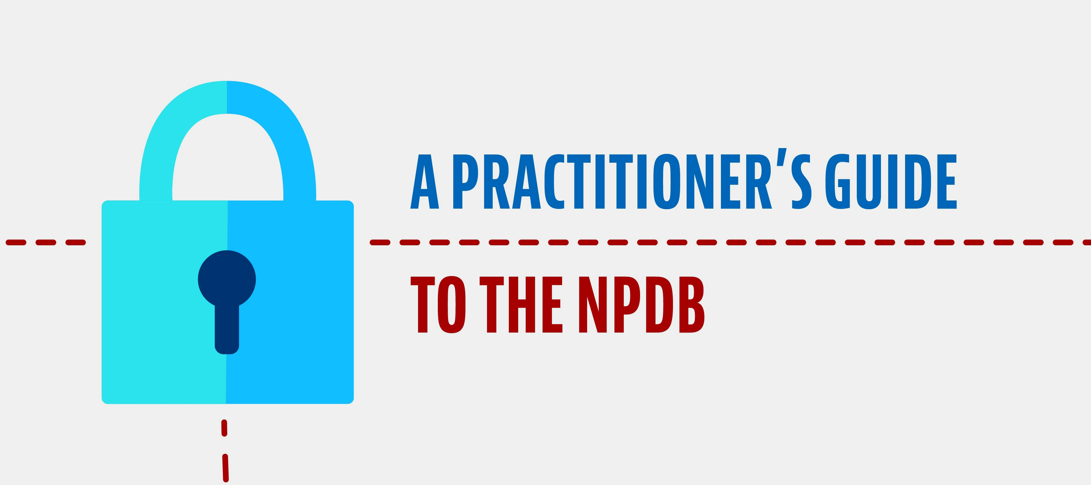 A Practitioner's Guide to the NPDB